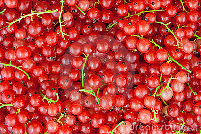 无核小葡萄干红色