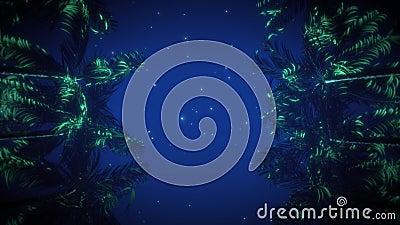 星光夜空VJ环背景下的棕榈大道 影视素材