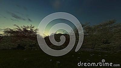 春天风景对天日出的timelapse夜