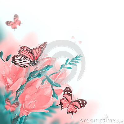 春天黄色报春花和蝴蝶图片