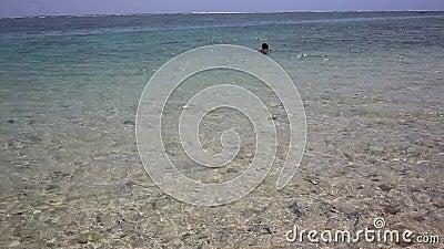 普吉海滩,夏日阳光下海滩海景 泰国普吉岛卡隆海滩 股票录像