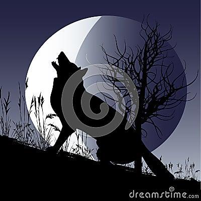 月亮狼 图库摄影