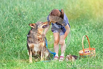 有狗和猫的女孩在野餐