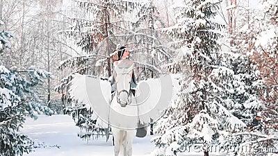 有黑色头发、灰色礼服和昂贵的首饰的美妙的黑暗的公主为在冬天森林骑马的步行出去了 股票录像