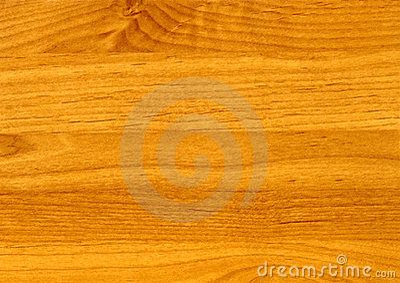 木的桤木接近的sinuata纹理