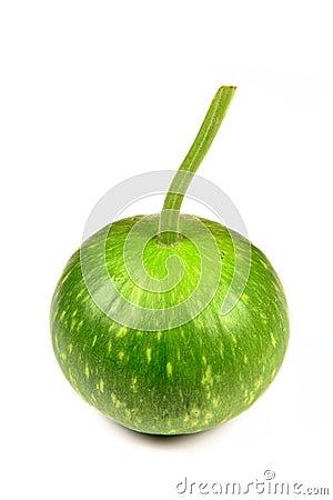 来回的金瓜