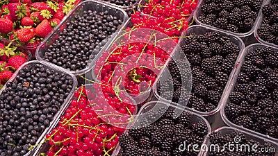 果子:草莓,黑莓,红浆果,在特别盘子的莓在柜台在超级市场 股票视频