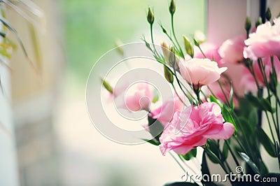 柔和的花束