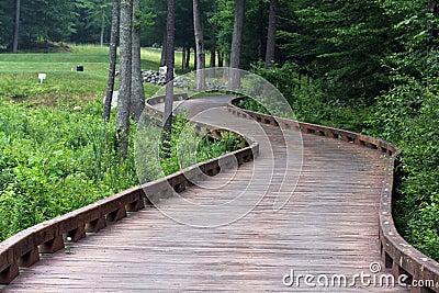 桥梁路线弯曲的高尔夫球