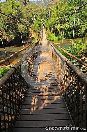 桥梁长的吊索