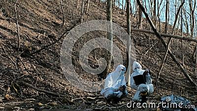 森林警察刑警收集证据和进行刑事调查的法医专家 股票录像