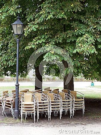 椅子在树荫下