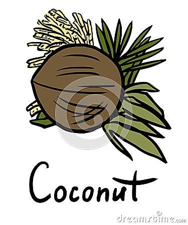 导航椰子的例证与花和叶子的图片