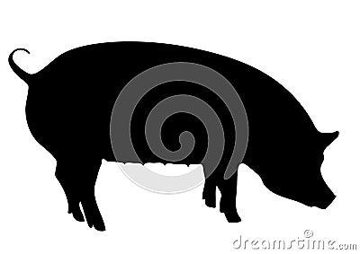 黑色剪影母猪.图片