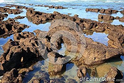 比亚利兹岩石