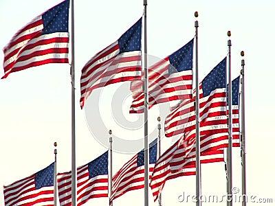 沙文主义情绪的美国