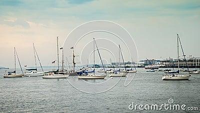波士顿港口