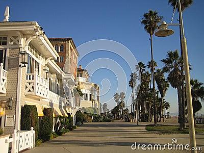 海滩加利福尼亚l威尼斯