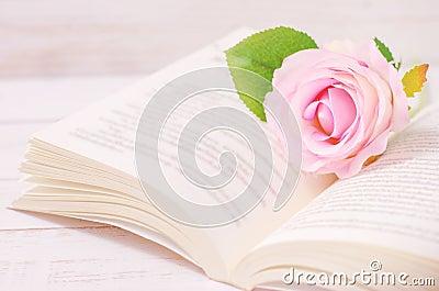 壁纸 花 花束 鲜花 400_265图片