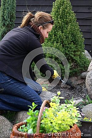 清洁庭院春天