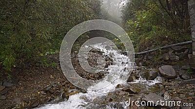 渗透清澈山河瀑布流动慢动 影视素材