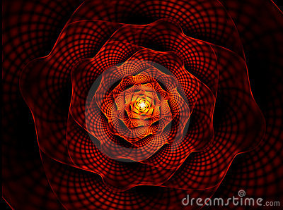 火热的花激情红色