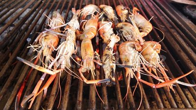 烤虾,在bbq的烤海鲜 影视素材