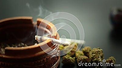 烧2的大麻联接 影视素材