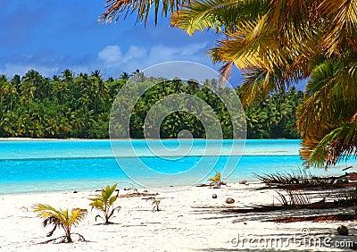 热带海滩的场面