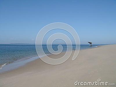 热带的海滩