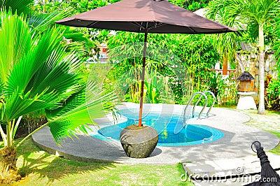 热带豪华池的游泳