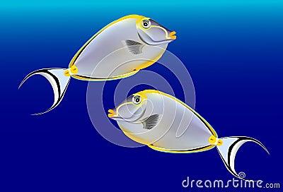 热带鱼,在蓝色背景的传染媒介例证.图片