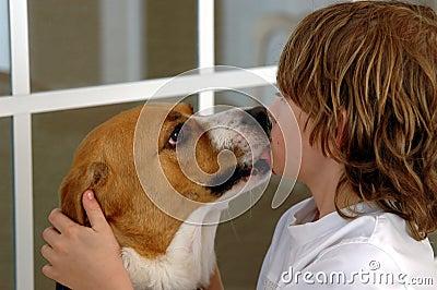 梦见狗亲吻自己抢自己吃的人