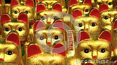 玩具猫戏剧 股票视频