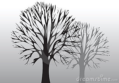 环境结构树