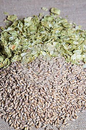 琥珀色的麦芽加上在平纹细布的夏天蛇麻草