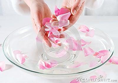瓣玫瑰色温泉