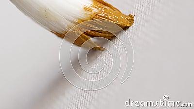 画笔特写镜头与油漆的在帆布 r 特写镜头有刚毛刷子做污迹油漆在白色帆布 影视素材