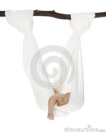 白种人吊床新出生的吊索