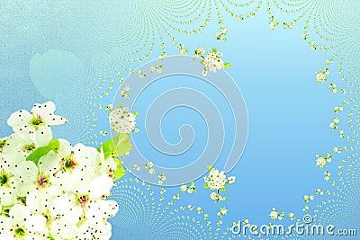 网络设计横幅和其他书刊上的图片的白色春天花纹理天蓝色背景.图片
