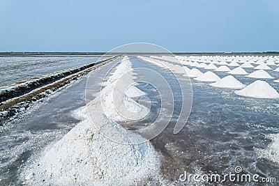 盐哺-m�f��dy.�9�b�/i_mr: no pr: no 1 0 0 盐 id 51428026 © catkool57