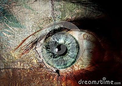 眼睛有,如果墙壁