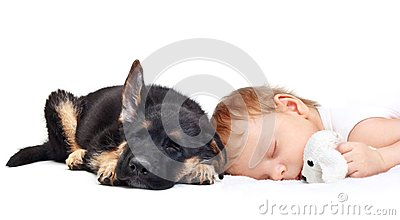 睡觉的男婴和小狗。