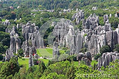石云南的森林国家公园图片