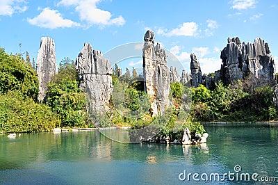 石森林或士林是著名的套位于士林伊自治县的石灰石形成,云南,中国.图片