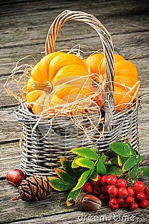用_秋天静物画用在篮子的新鲜的南瓜