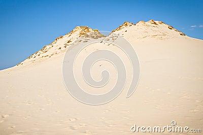 移动沙丘在波兰