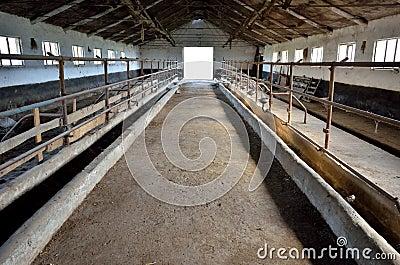 空的牛棚图片
