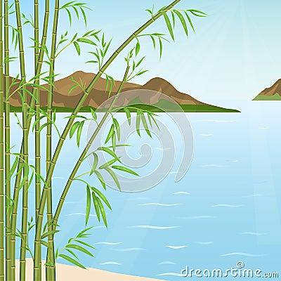 竹子丛林在山和水背景的.