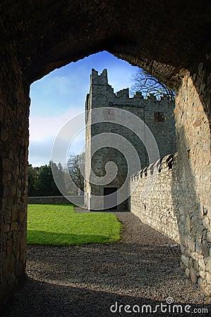 第17世纪城堡/Monkstown修道院